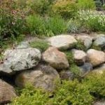 large landscaping rocks in a yard