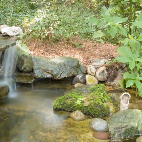 backyard pond with rocks and waterfall