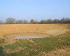 small pond in the middle of a field