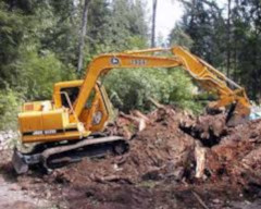 construction equipment removing a tree stump
